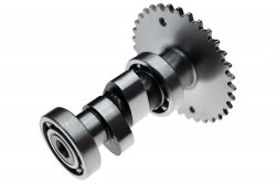 A15 Camshaft [Low-speed TORQUE Cam]