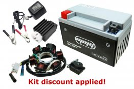 "150cc ""Won't Charge"" Tune-up Kit [Type C]"