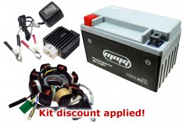 "150cc ""Won't Charge"" DC Tune-up Kit [Type D]"